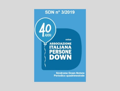 SDN 3/2019, monografia sul DOWNTOUR